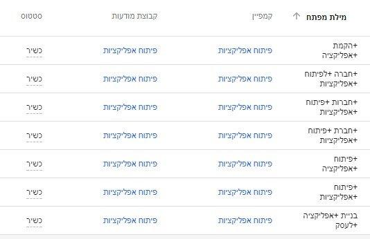 בחירה נכונה של מילות מפתח לקמפיין גוגל