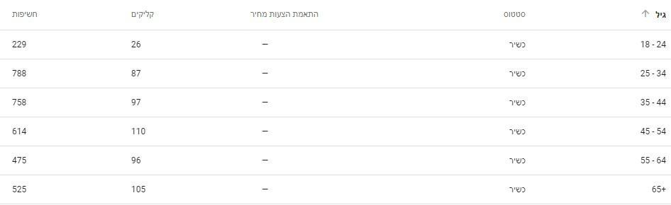 תוצאות קמפיין גוגל לפי גילאים