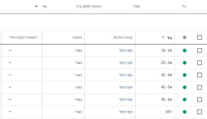 מיקוד לפי גיל בקמפיין גוגל